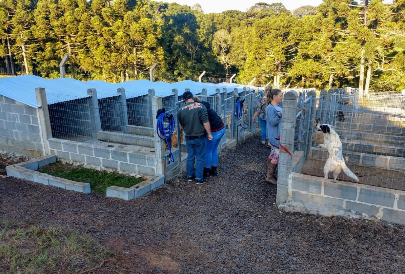 Prefeitura de Xanxerê conhece projeto de lar temporário de animais no RS