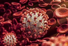 Xanxerê ultrapassa os 1.160 pacientes recuperados de Covid-19