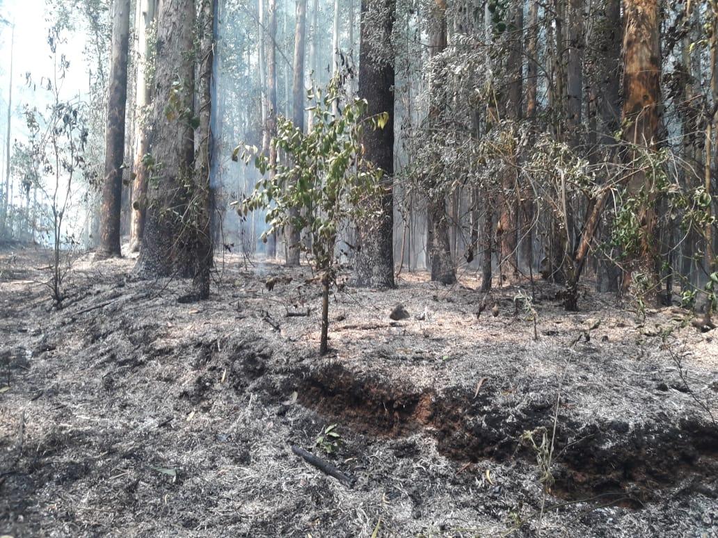 Bombeiros de Xanxerê combatem incêndio de grandes proporções