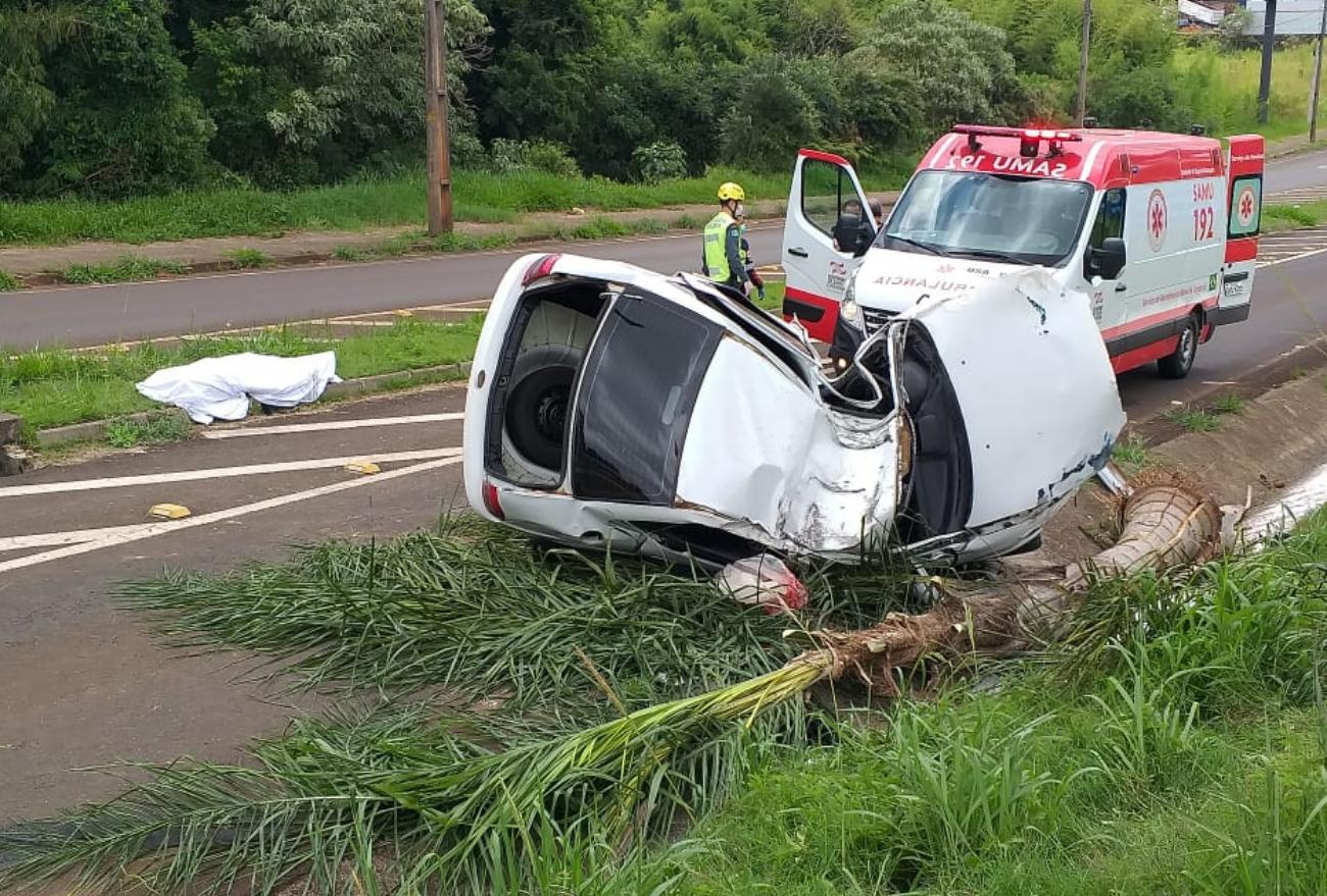 Jovem morre após veículo sair de pista e colidir em coqueiro na SC-480