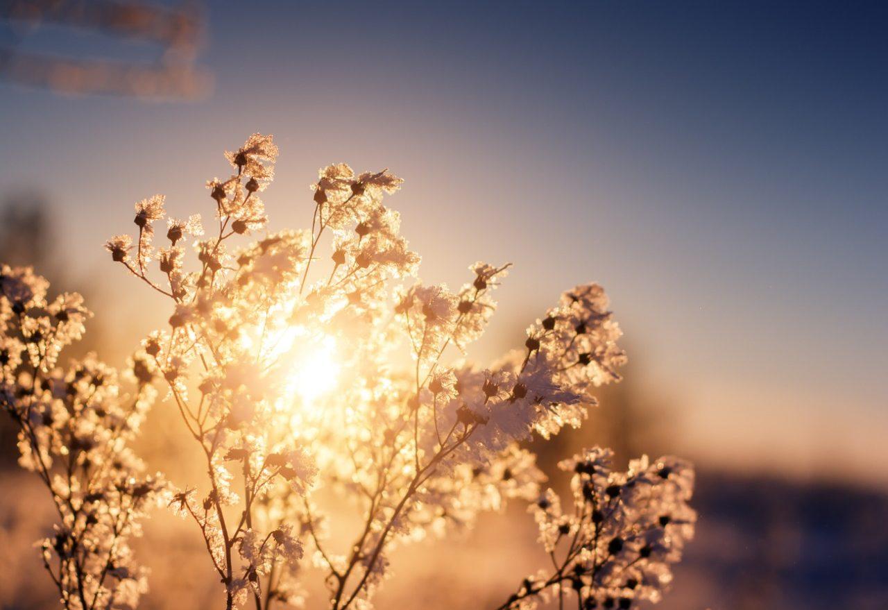 O dia amanhece com sol e geada nesta terça-feira (20), em Xanxerê