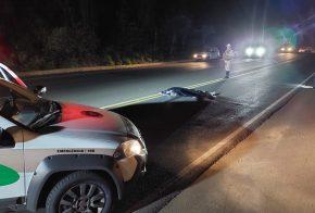 Jovem de 23 anos morre atropelado na BR-282, no Oeste